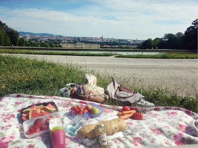 Picknick Gloriettewiese