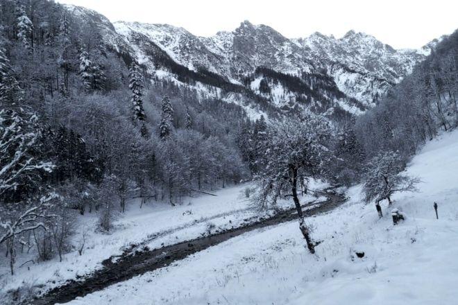 Der Blöttenbach im Nationalpark Kalkalpen (c) Viktoria Klimpfinger | 1000things.at