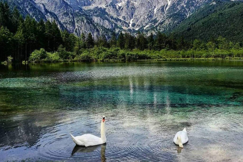 Seen in Österreich