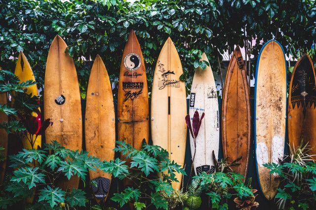 Surfen in Österreich