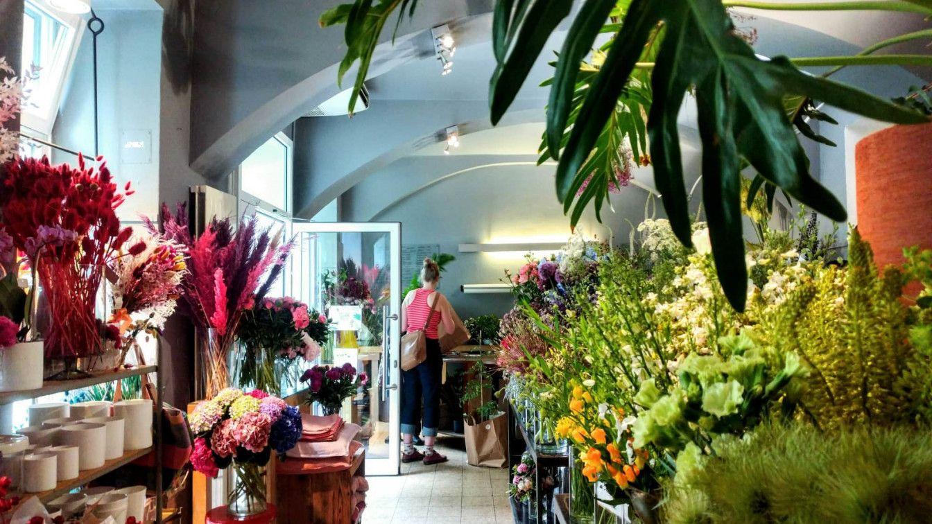 Pflanzenladen in Wien