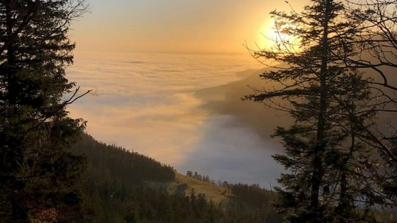 Schneeberg Nebel Wien