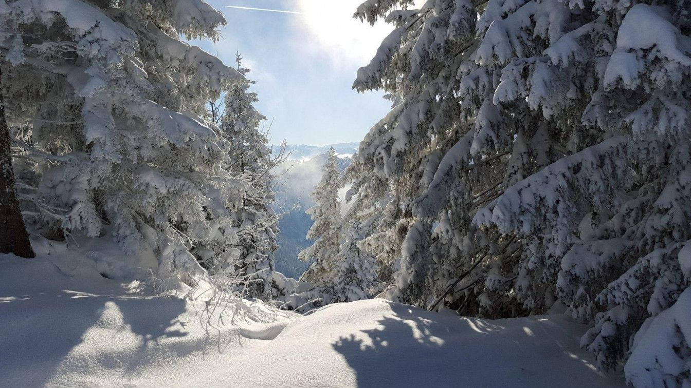 Winterwanderungen Tirol