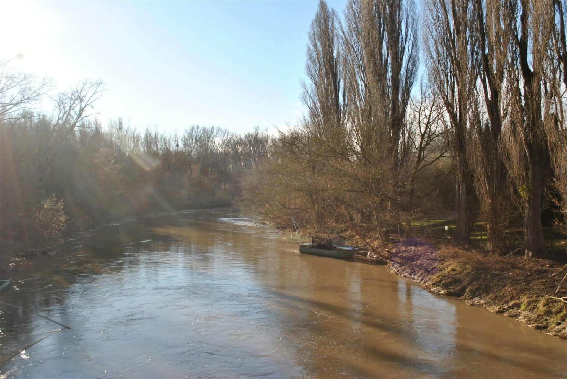 Donauufer Mannswörther Auen