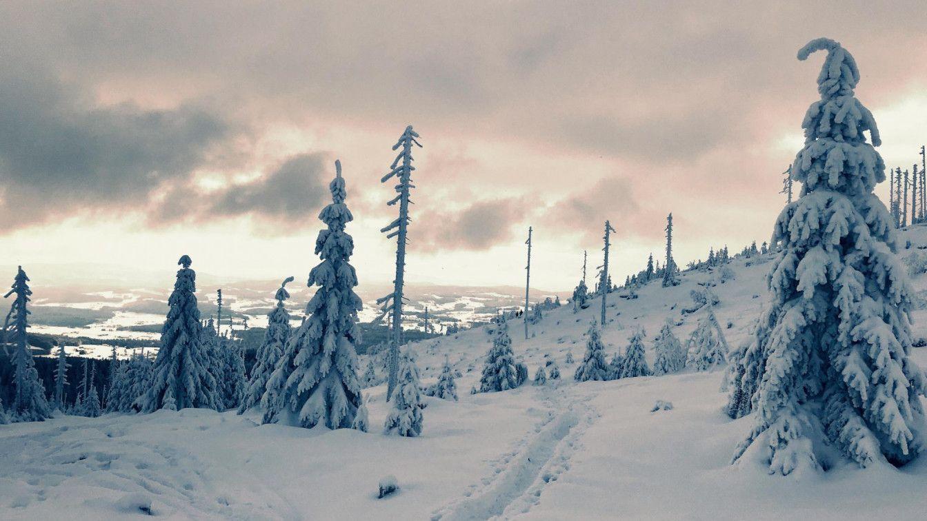 Schneeschuhwanderungen Oberösterreich