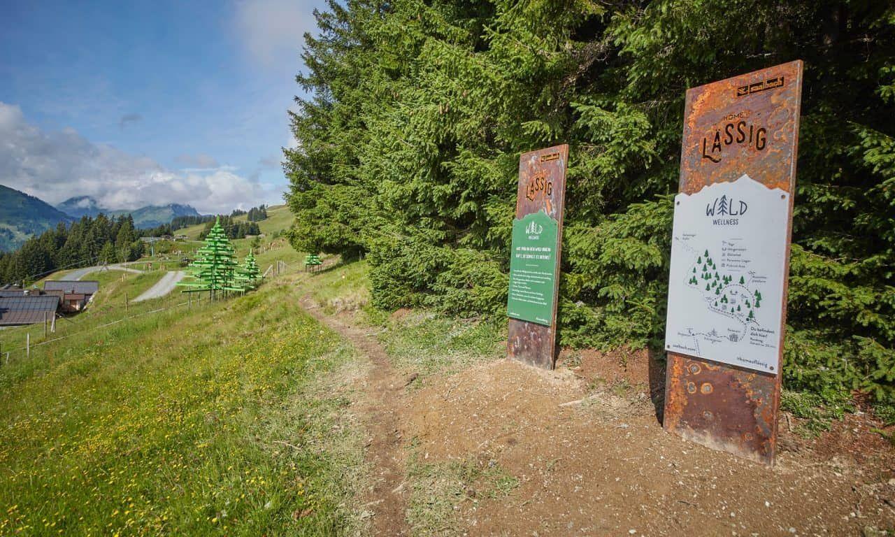 Waldwellnessweg Saalbach Hinterglemm | (c) Saalbach.com, Daniel Roos