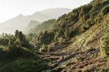 Tulfes, Inntaler Höhenweg, Zirbenweg