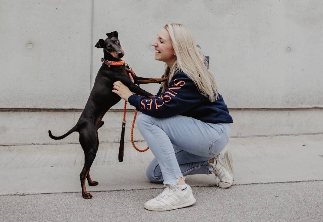 Hunde Shops Österreich