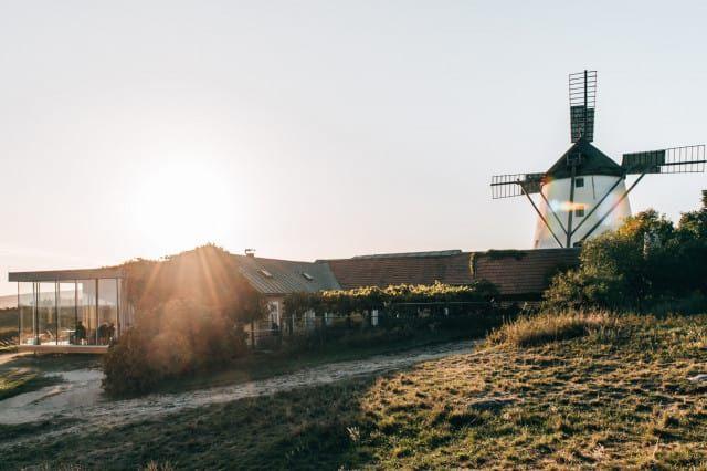 Weinviertel Windmühle Retz