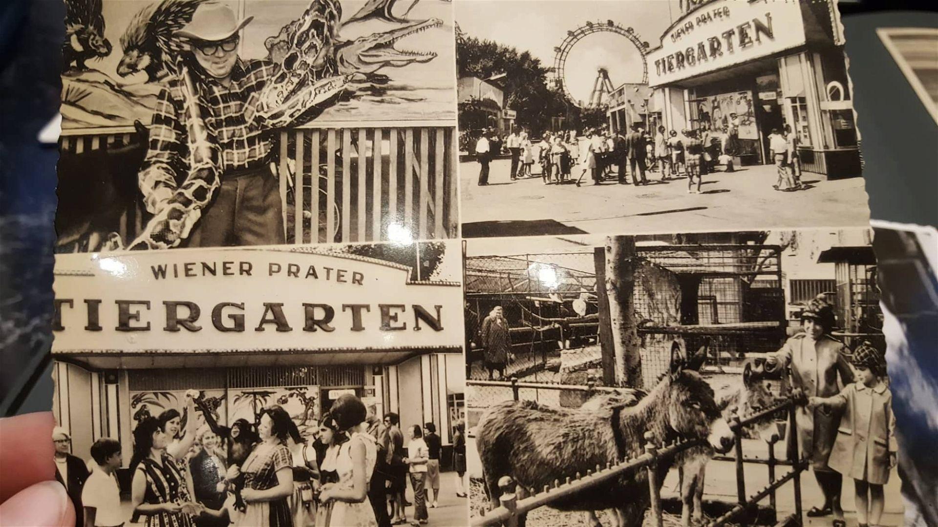 Prater-Zoo: Ansichtskarte