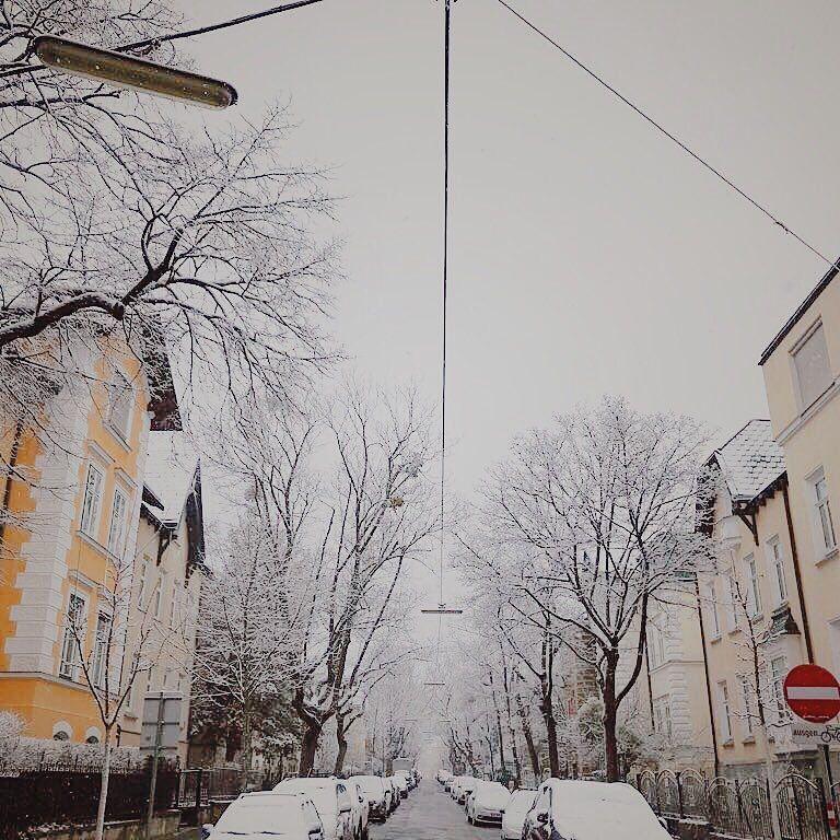 Winterspaziergaenge in wien
