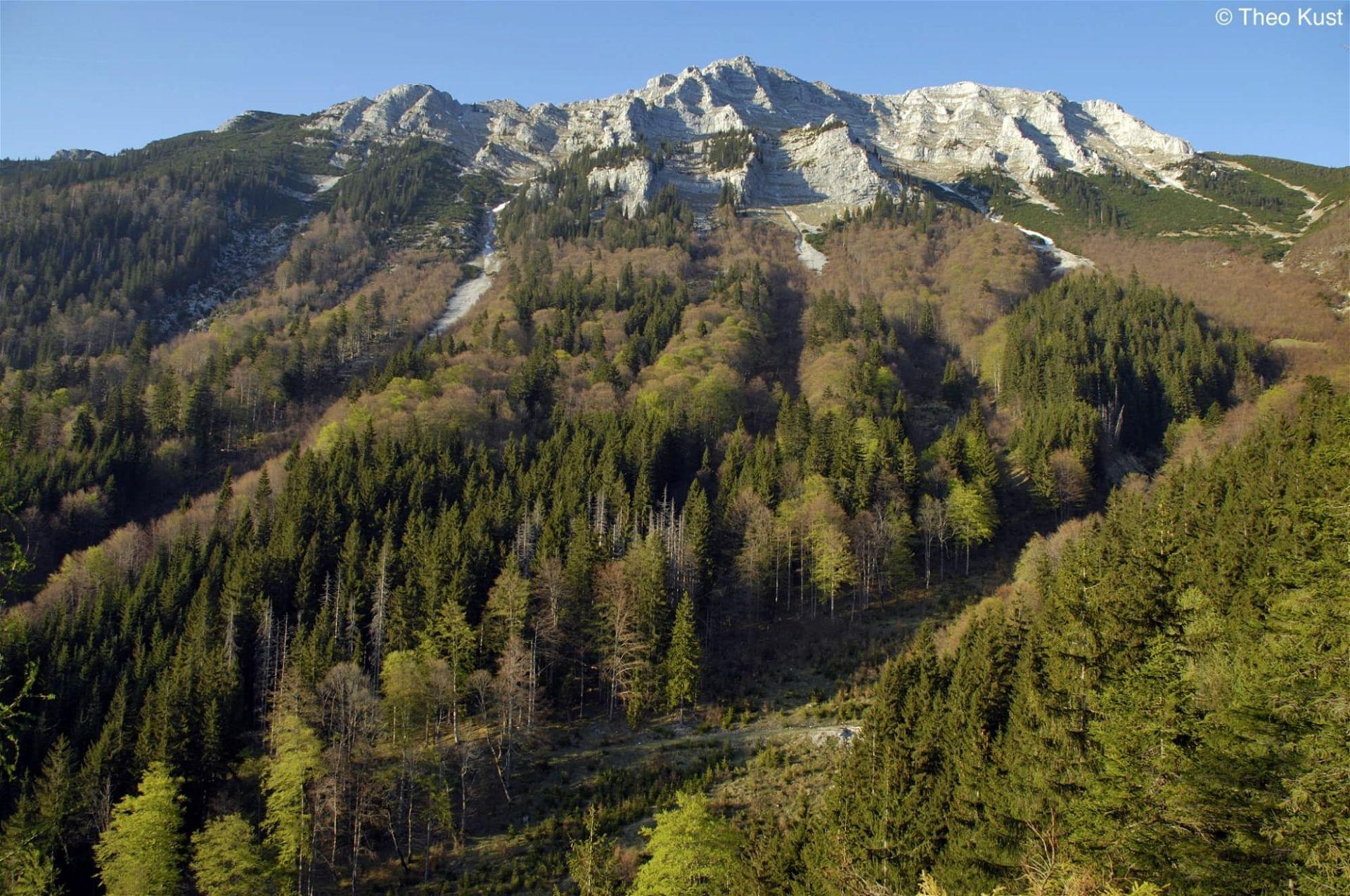 Die Südwestflanke des Dürrenstein im Frühling