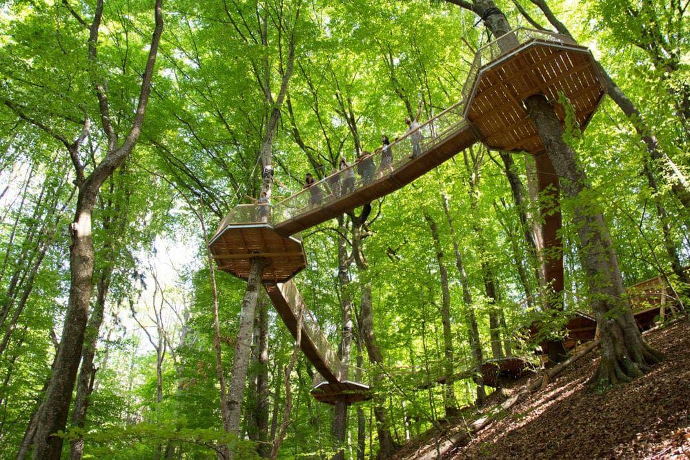 Kletterpark Familypark Ossiacher See