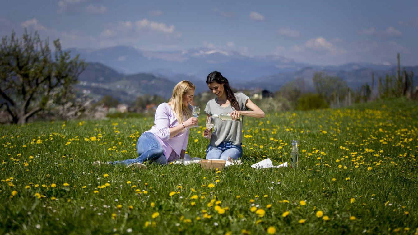 Picknicken Steiermark