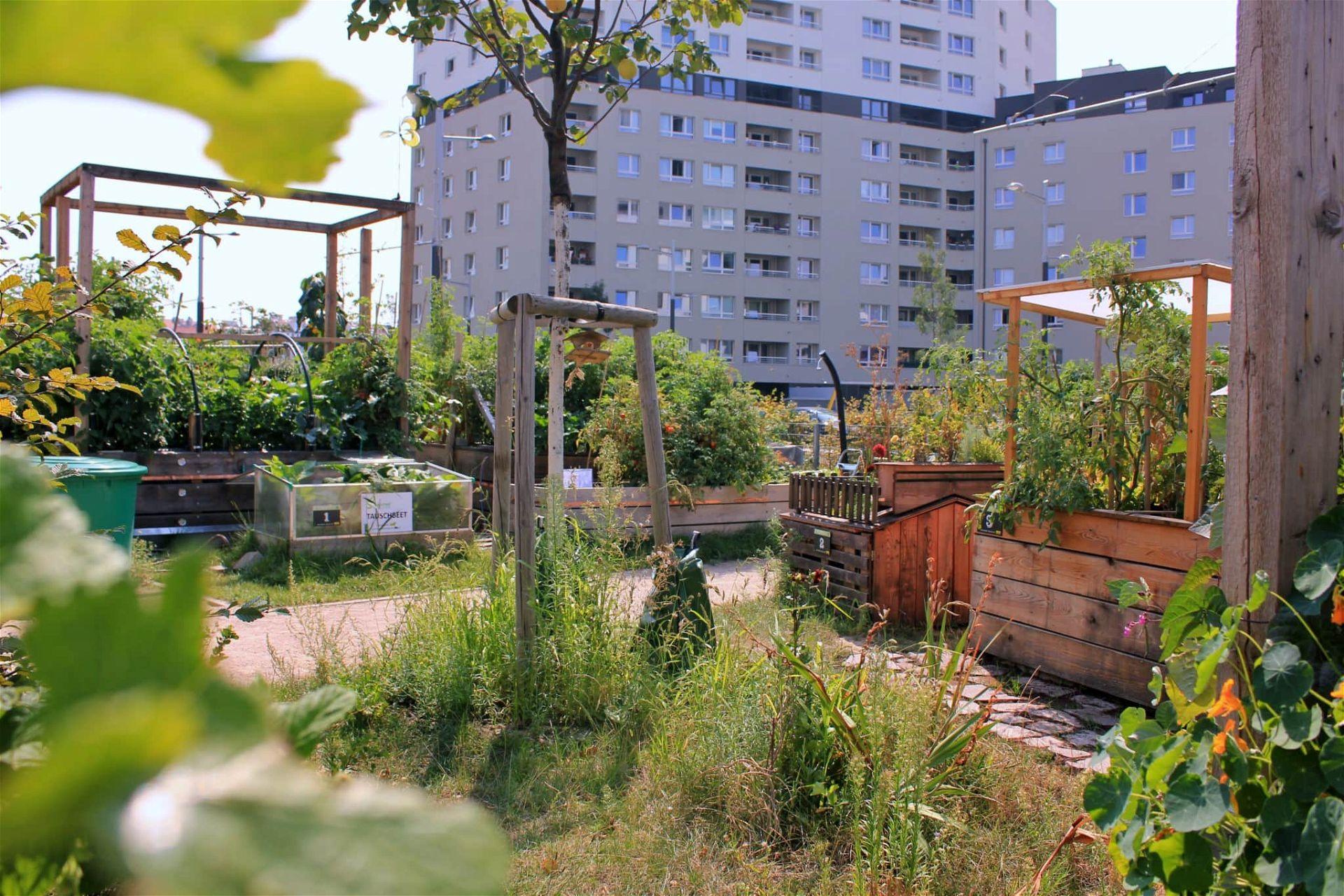 Sonnwendgarten