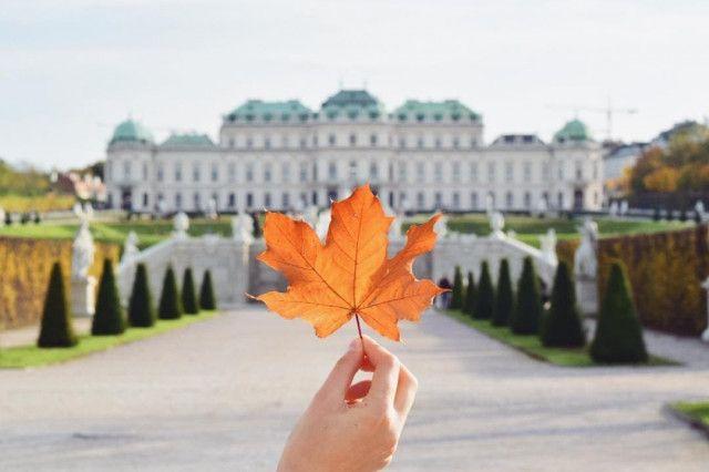 Belvedere Herbst