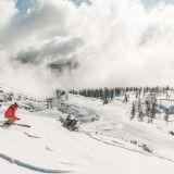 Skifahrer im Pulverschnee auf der Wurzeralm