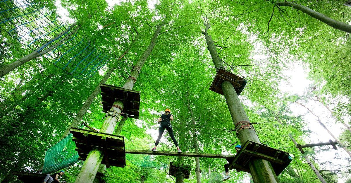 Der WIKI Adventure Park in Graz