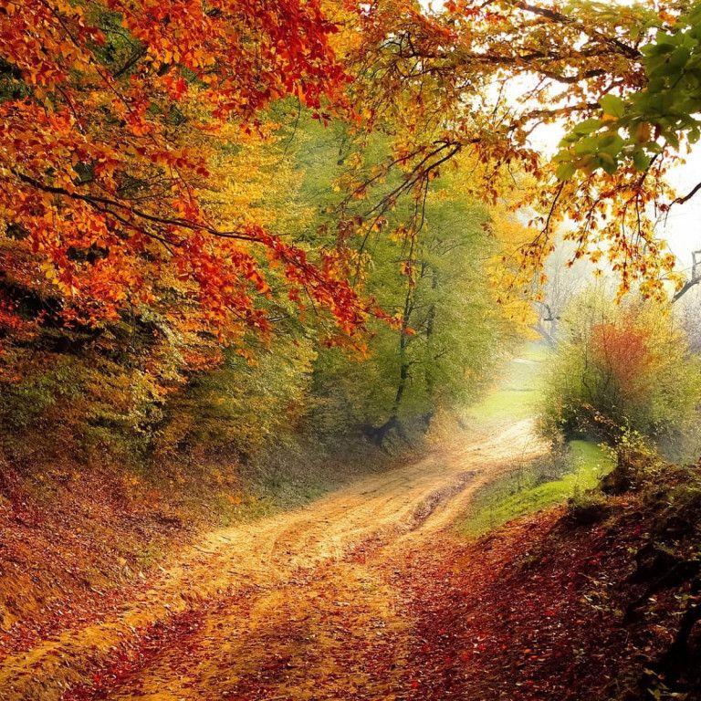 Herbststimmung Österreich