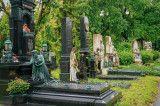 Zentralfriedhof spazieren